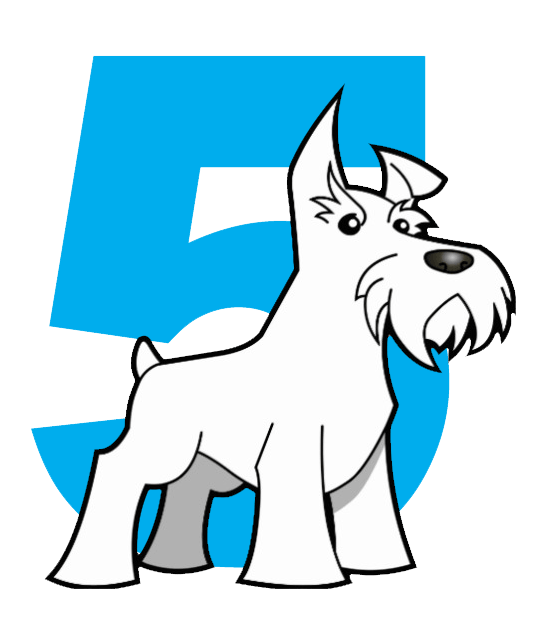 Five Dog Solutions Web Design Firm in Amarillo Tx - Logo